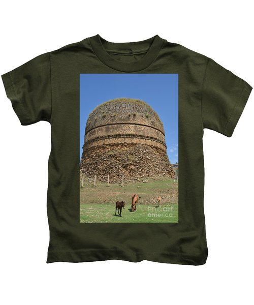 Buddhist Religious Stupa Horse And Mules Swat Valley Pakistan Kids T-Shirt
