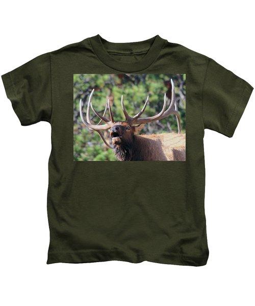 Bugling Bull Kids T-Shirt