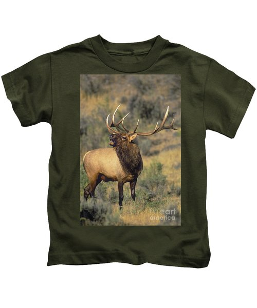 Bull Elk In Rut Bugling Yellowstone Wyoming Wildlife Kids T-Shirt