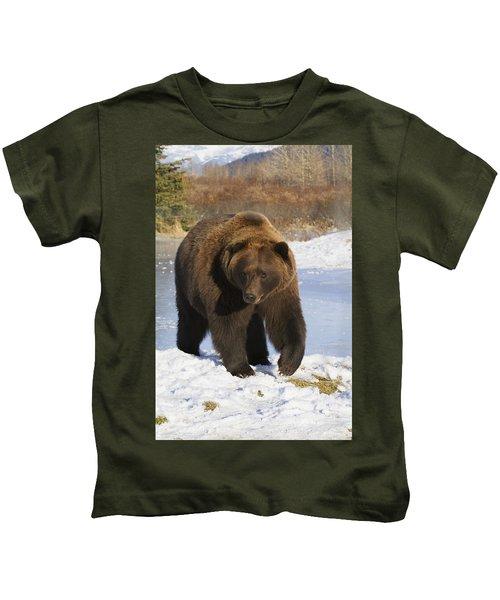 Captive Mature Brown Bear Walking Kids T-Shirt