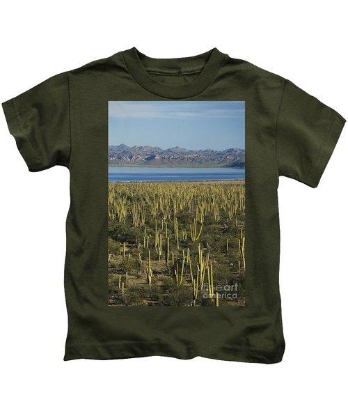 Cardon Cacti In Mexico Kids T-Shirt