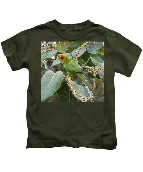 Chiriqui Conure 2 Kids T-Shirt by Heiko Koehrer-Wagner