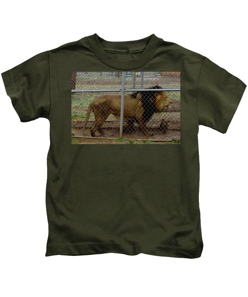 Christmas Lion Kids T-Shirt