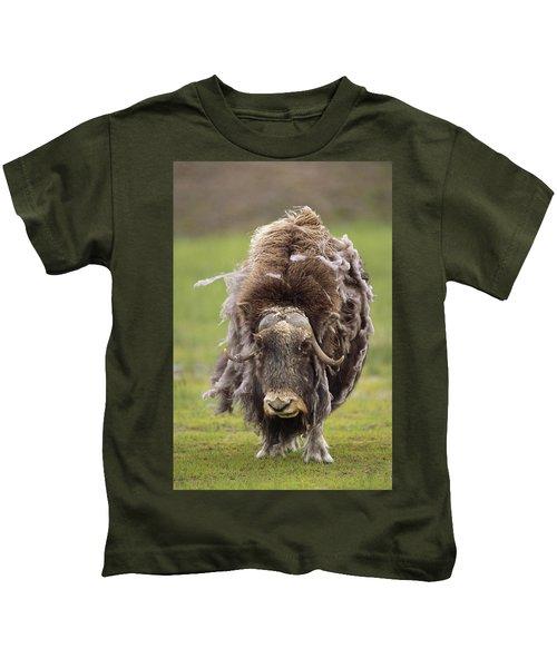 Closeup Of Very Shaggy Muskox Losing Kids T-Shirt