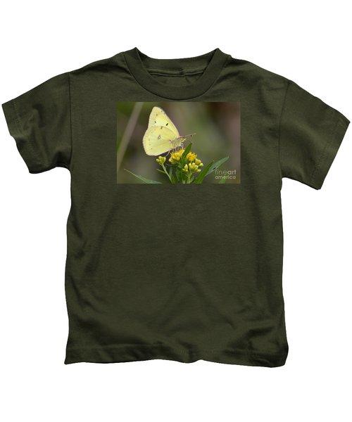 Clouded Sulphur Kids T-Shirt