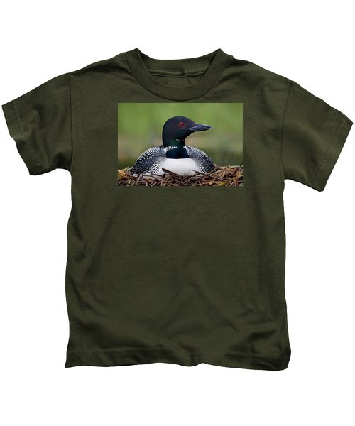 Common Loon On Nest British Columbia Kids T-Shirt by Connor Stefanison
