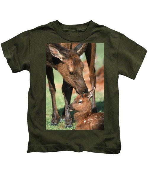Cow Elk Tending To Its Calf Kids T-Shirt