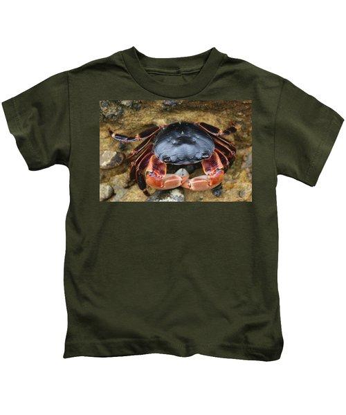 Crabby Pants  Kids T-Shirt