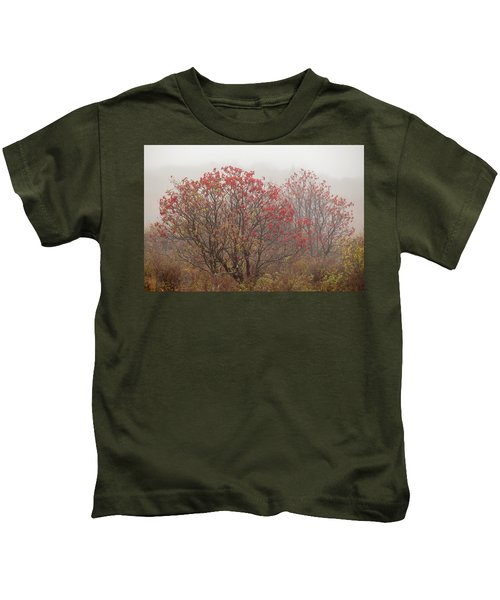 Crimson Fog Kids T-Shirt