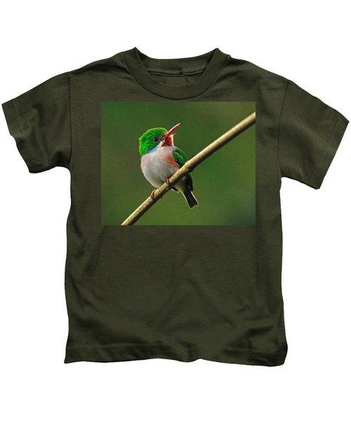Cuban Tody Kids T-Shirt by Tony Beck