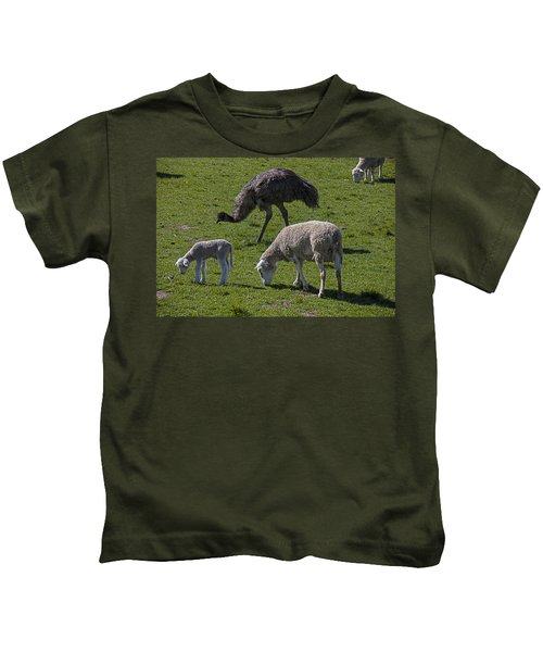 Emu And Sheep Kids T-Shirt by Garry Gay
