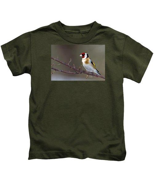 European Goldfinch  Kids T-Shirt