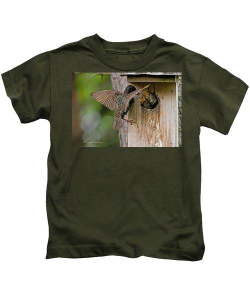 Feeding Starlings Kids T-Shirt by Torbjorn Swenelius