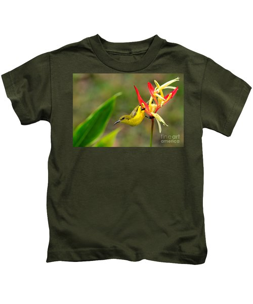 Female Olive Backed Sunbird Clings To Heliconia Plant Flower Singapore Kids T-Shirt
