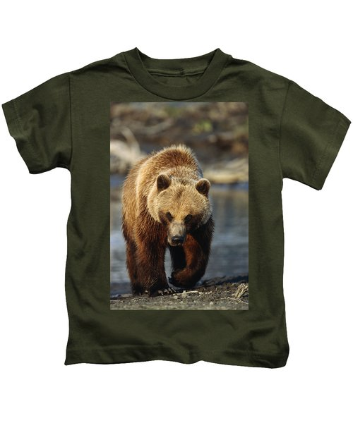 Frontal View Of Brown Bear Sc Alaska Kids T-Shirt