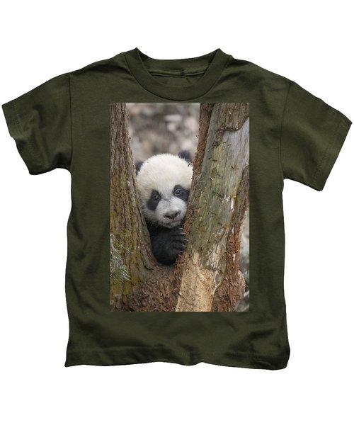 Giant Panda Cub Bifengxia Panda Base Kids T-Shirt