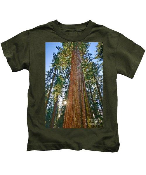 Giant Sequoia Trees Of Tuolumne Grove In Yosemite National Park. Kids T-Shirt