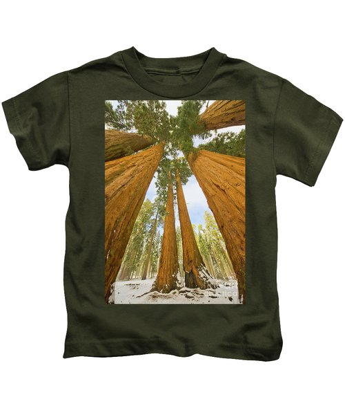 Giant Sequoias And First Snow Kids T-Shirt