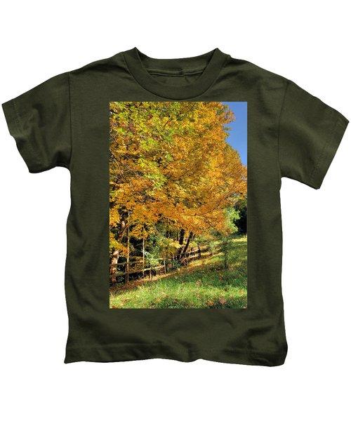 Golden Fenceline Kids T-Shirt