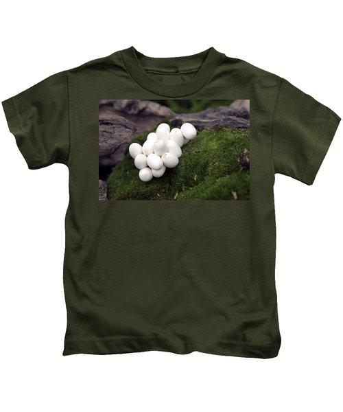 Grass Snake Eggs Kids T-Shirt