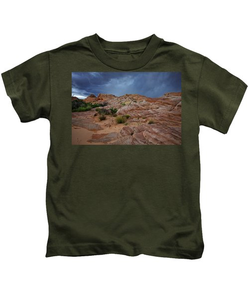 Gray And Red In The Valley Of Fire Kids T-Shirt