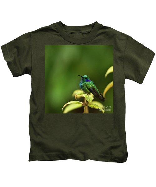 Green Violetear Hummingbird Kids T-Shirt