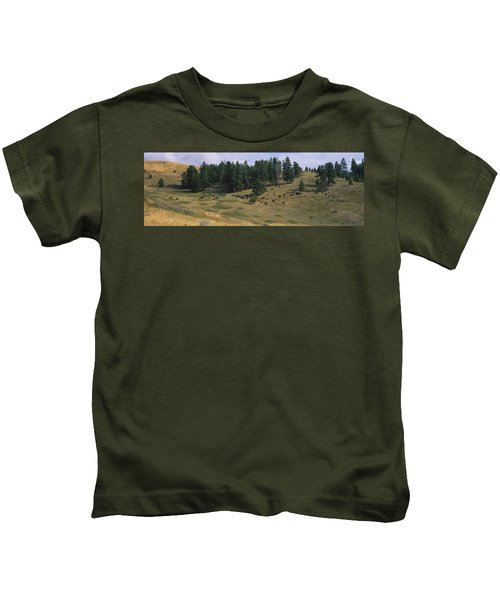 High Angle View Of Bisons Grazing Kids T-Shirt