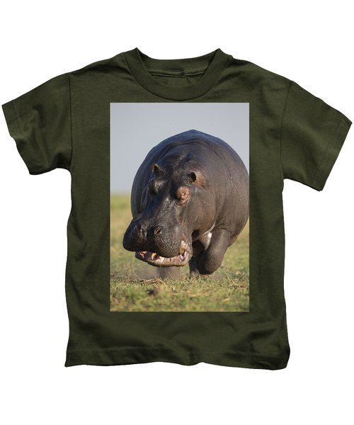 Hippopotamus Bull Charging Botswana Kids T-Shirt by Vincent Grafhorst