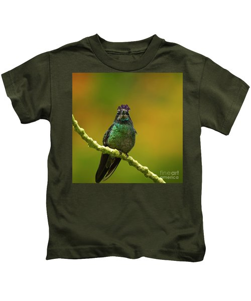 Hummingbird With A Lilac Crown Kids T-Shirt