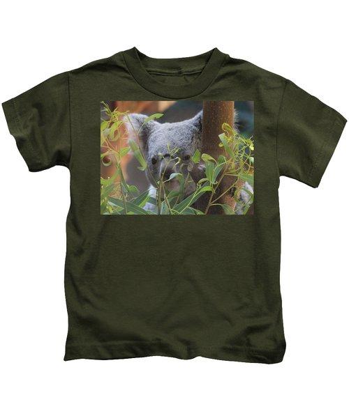 Koala Bear  Kids T-Shirt by Dan Sproul