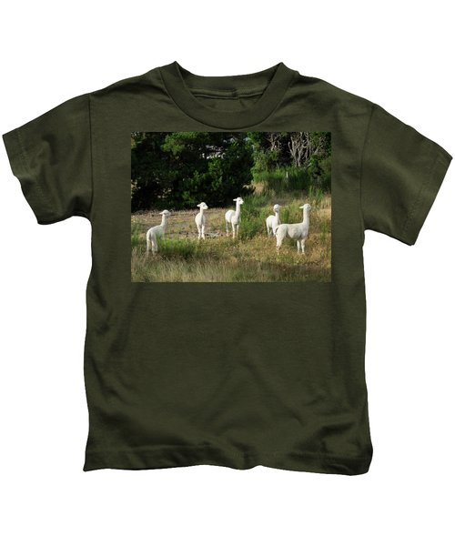 Llamas Standing In A Forest Kids T-Shirt by Panoramic Images