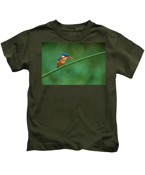 Malachite Kingfisher Tanzania Africa Kids T-Shirt