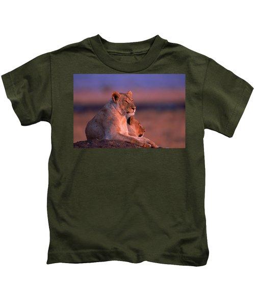 Maneless Lions In Kenya Kids T-Shirt