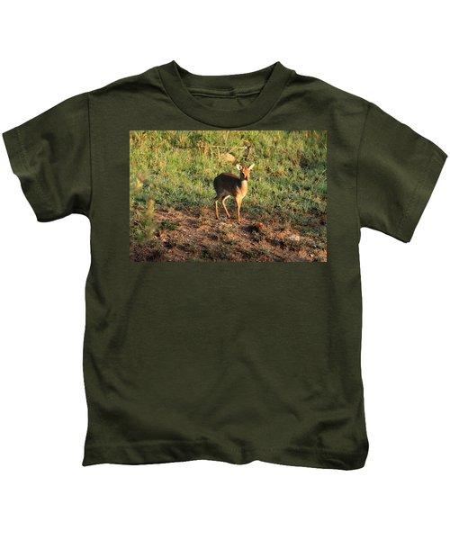 Masai Mara Dikdik Deer Kids T-Shirt