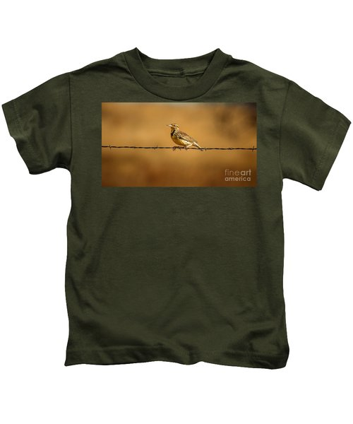 Meadowlark And Barbed Wire Kids T-Shirt by Robert Frederick