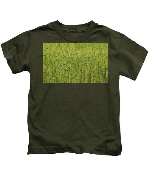Organic Green Grass Backround Kids T-Shirt