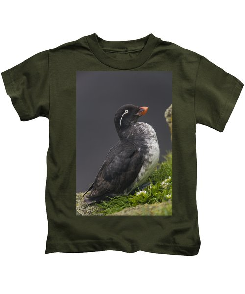 Parakeet Auklet Sitting In Green Kids T-Shirt by Milo Burcham
