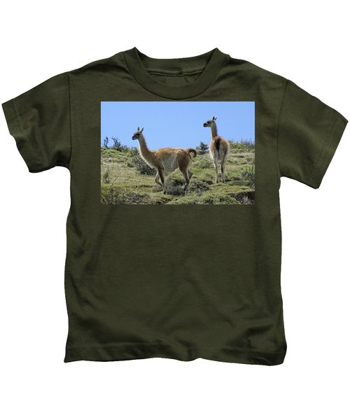 Patagonian Guanacos Kids T-Shirt by Michele Burgess