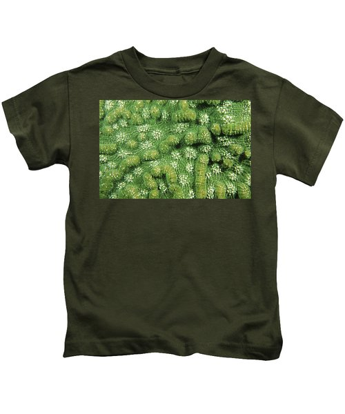 Patterns Kids T-Shirt