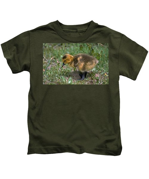 Puff Of Feathers Kids T-Shirt