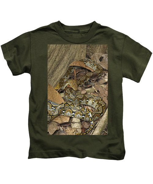 Reticulated Python Kids T-Shirt