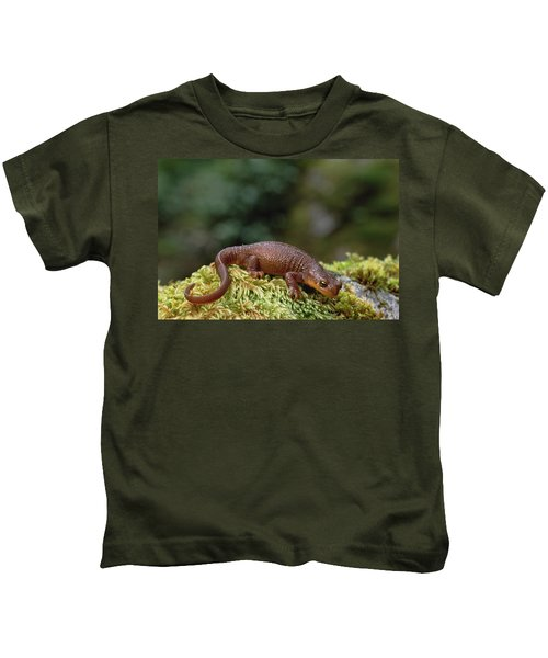 Rough-skinned Newt Oregon Kids T-Shirt by Gerry Ellis