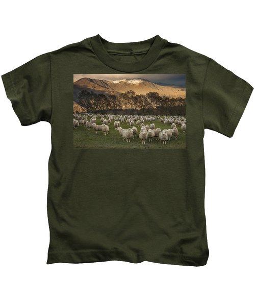 Sheep Flock At Dawn Arrowtown Otago New Kids T-Shirt