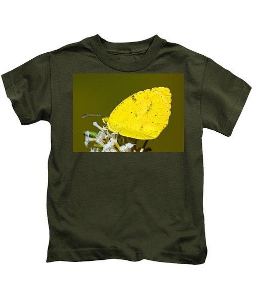 Sleepy Orange Sulfur Butterfly Kids T-Shirt
