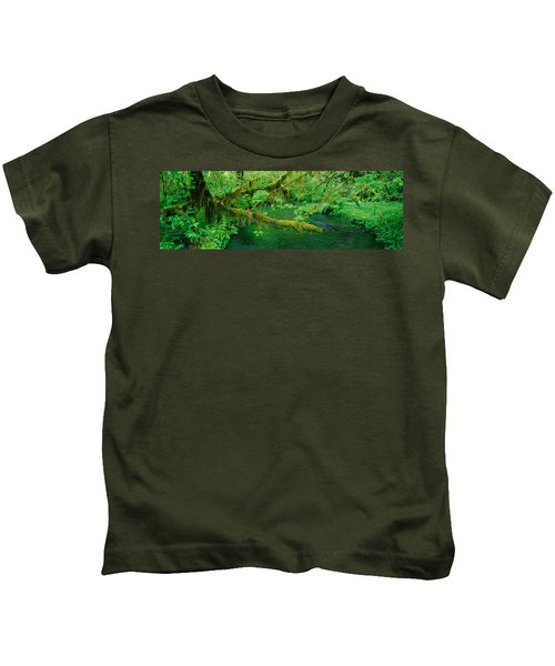 Stream Flowing Through A Rainforest Kids T-Shirt by Panoramic Images