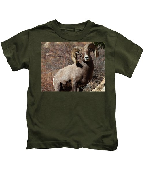 The High And Mighty Kids T-Shirt