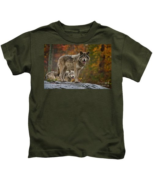 Timber Wolf Pictures 410 Kids T-Shirt