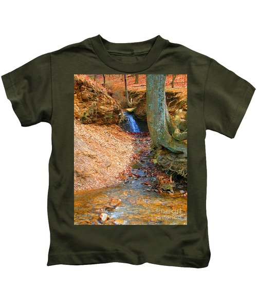 Trickling Waterfall By Shellhammer Kids T-Shirt