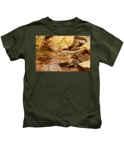 Varied Thrush By Pond Kids T-Shirt