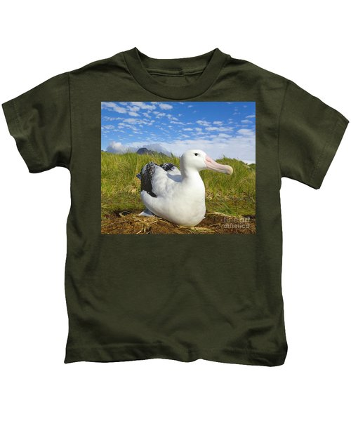 Wandering Albatross Incubating  Kids T-Shirt by Yva Momatiuk John Eastcott